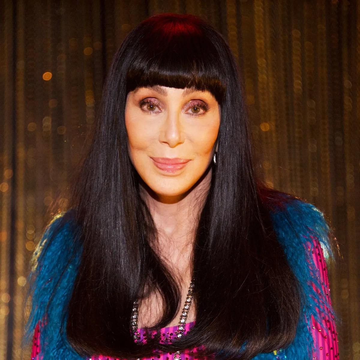 Cher Offers To Volunteer At A Post Office On Twitter