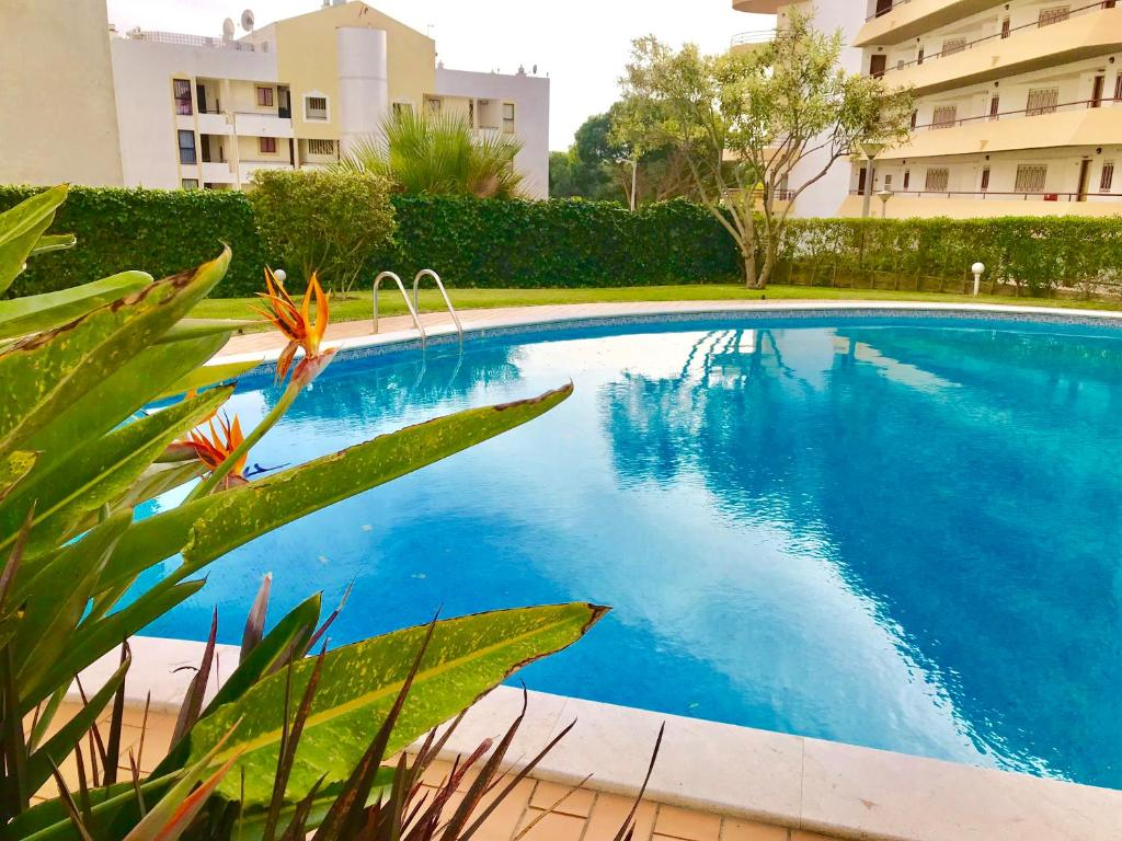 Zwembad Portugal Tropicana 404 By Enjoy Portugal Appartement Quarteira