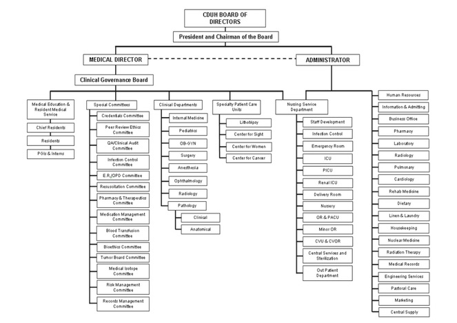 Hospital organization Research paper Academic Writing Service - hospital organizational chart