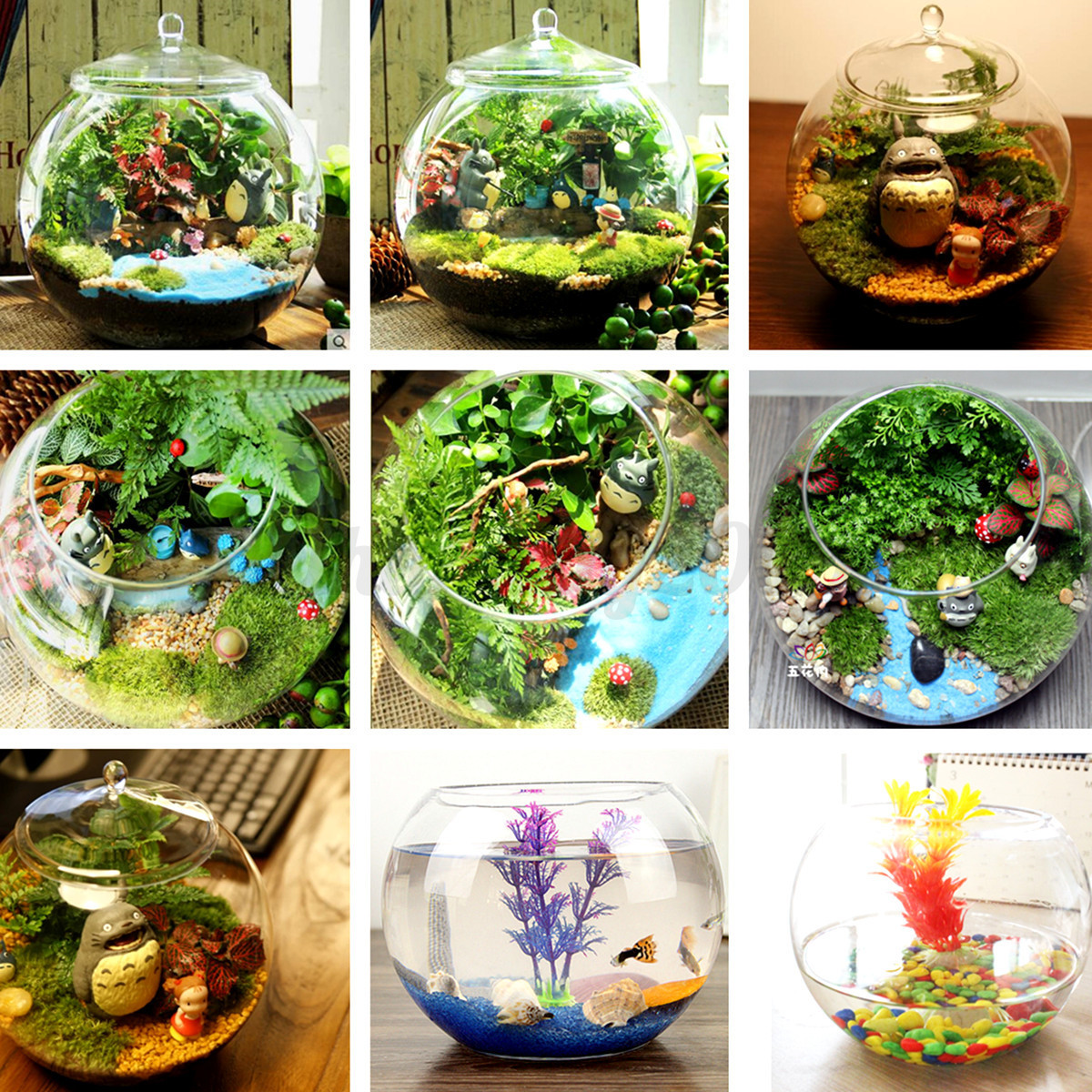 Diy Terrarium Stand Large 20cm Landscape Ball Shape Glass Bottle Terrarium