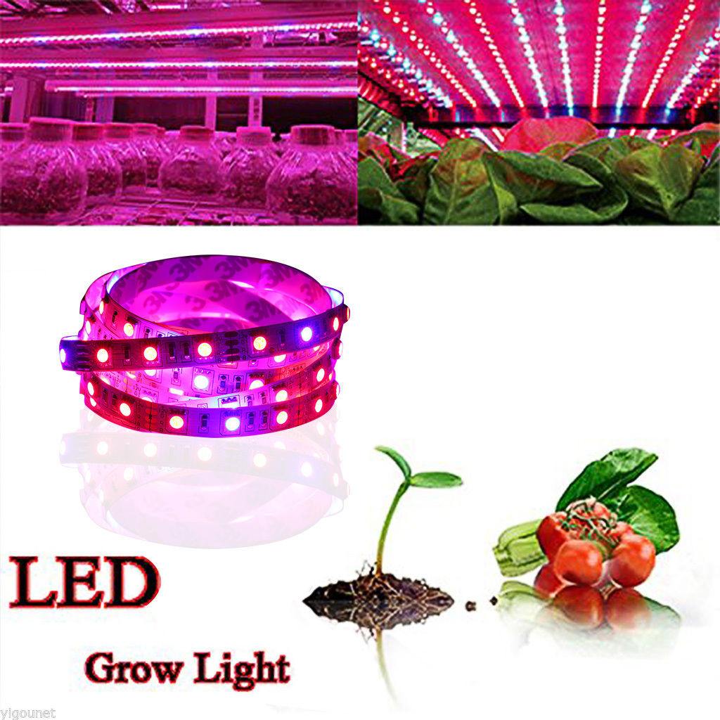 Grow Lights For Indoor Plants Led Grow Light Hydroponic Medical Indoor Plants Panel Lamp