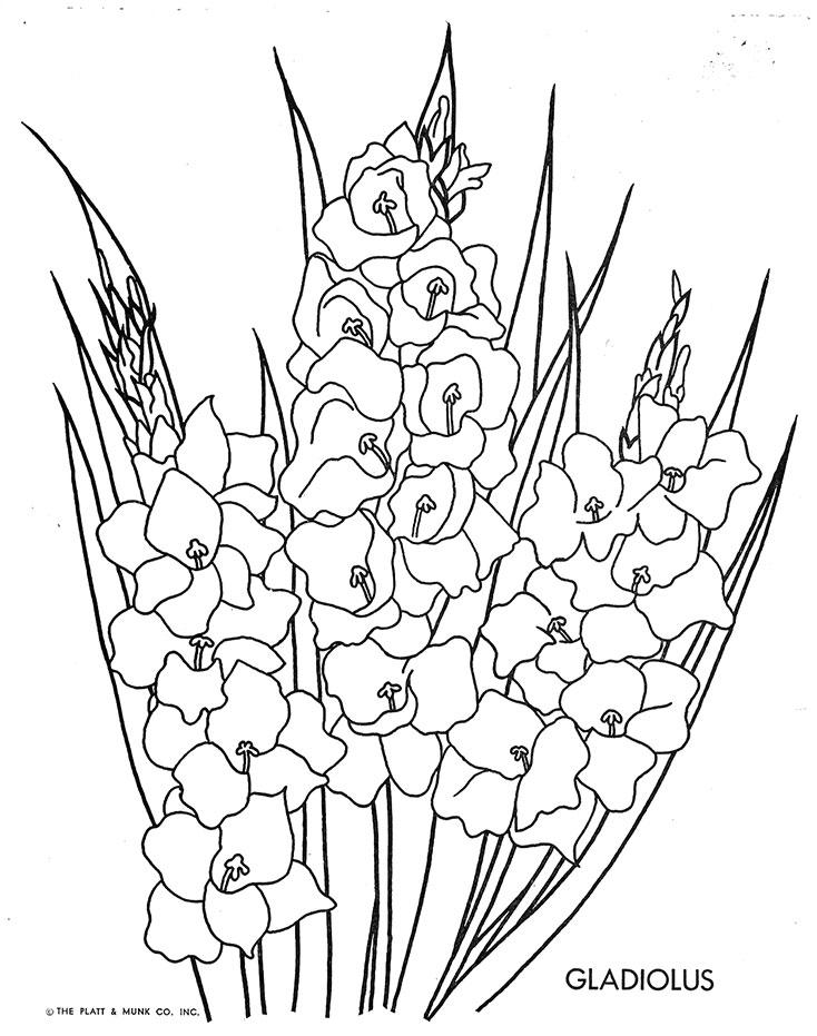 gladiolus w 9 form 2011 printable,form free download card designs on printable form maker