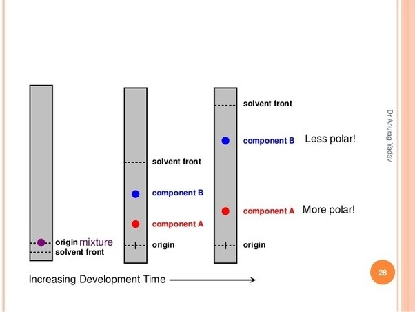 What Is A Solvent Front In Chromatography How Is It Used