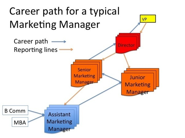 What Would Be A Good Career Path For Marketing Quora