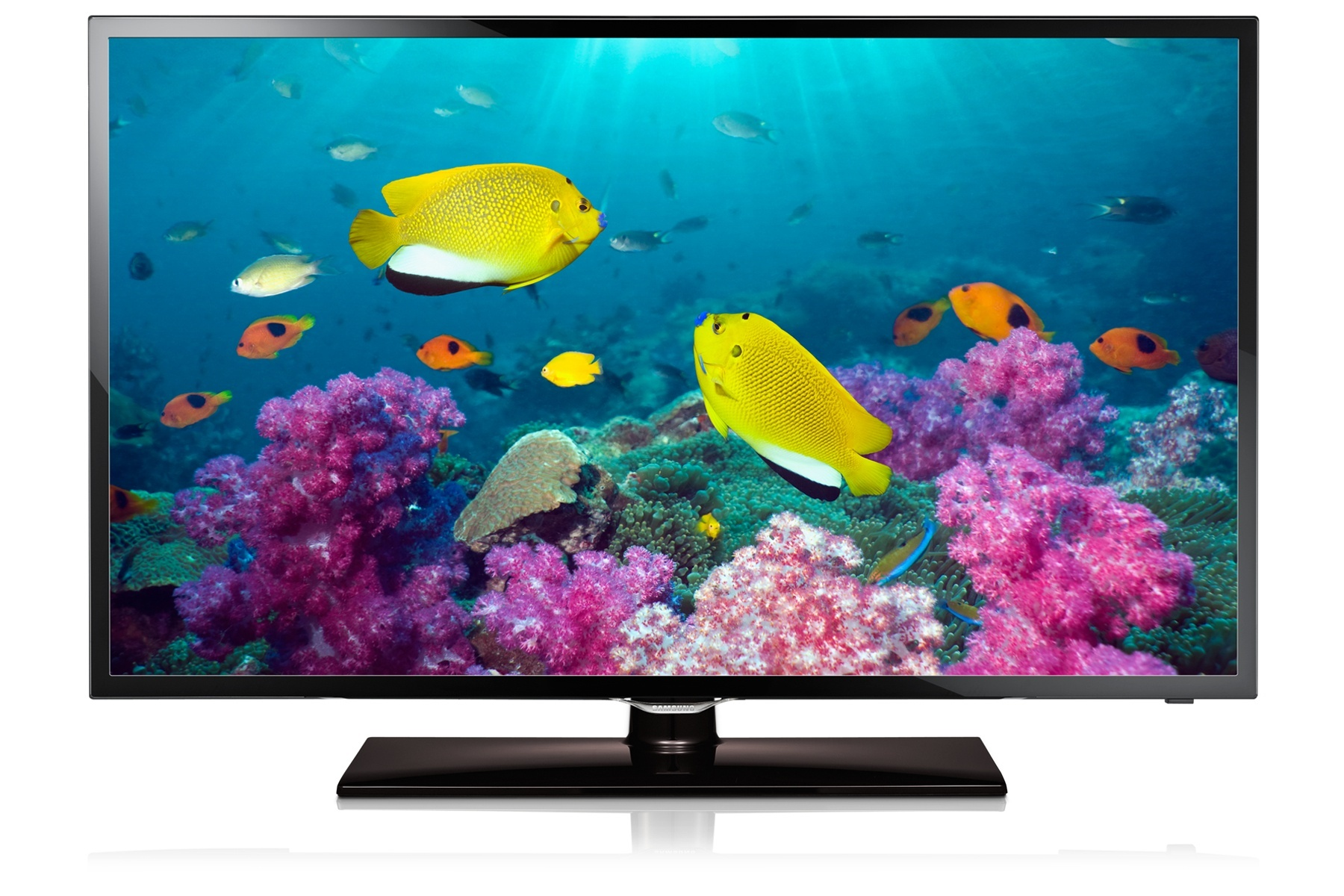 Led Online Shop What Is The Best Online Shopping Platform For The Best Led Tv In