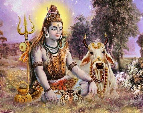 Shiv Ji 3d Wallpaper Who Is The Greatest Devotee Of Lord Shiva Nandi Or