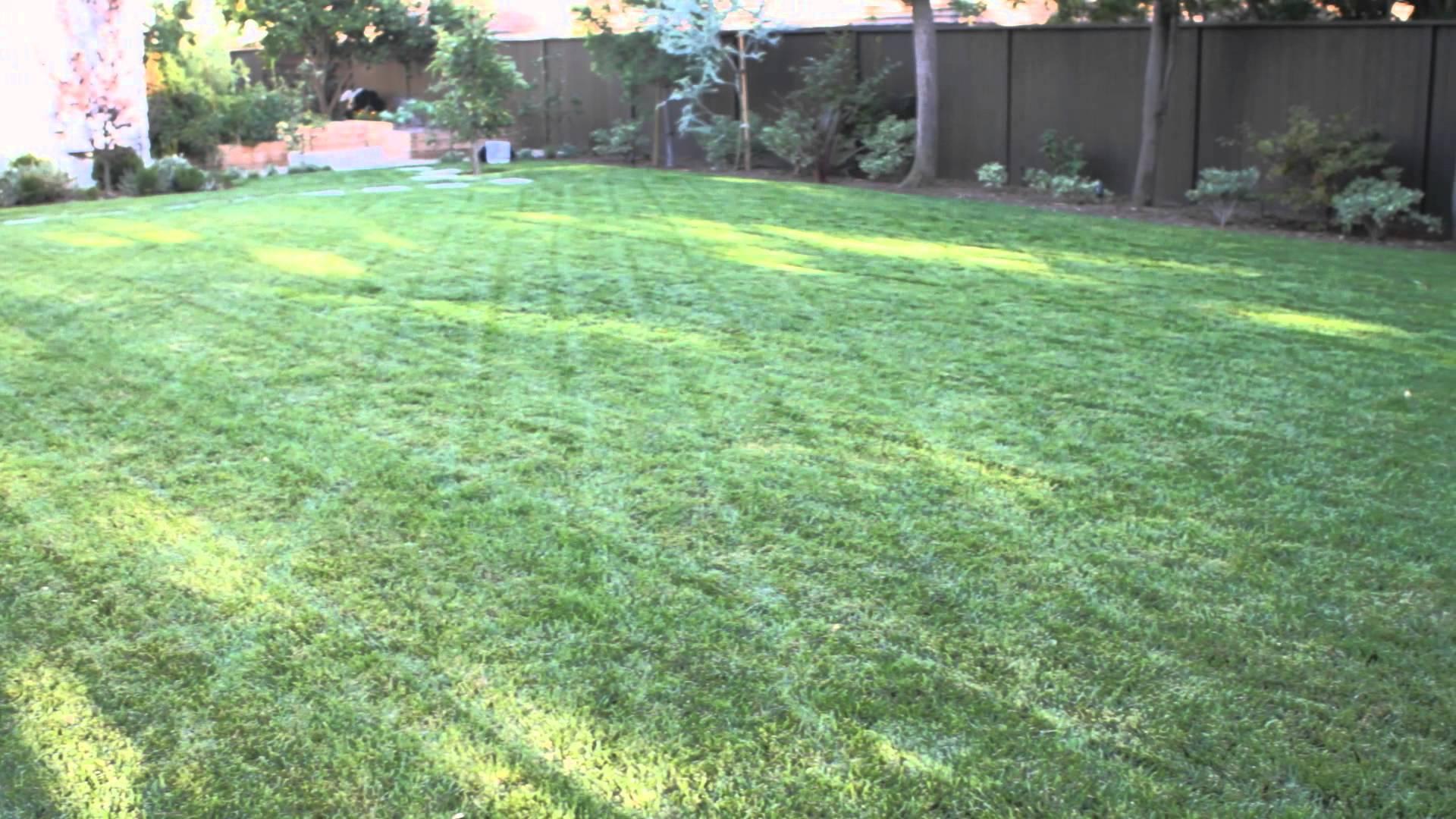 How to Landscape a Big Backyard : Landscaping & Garden