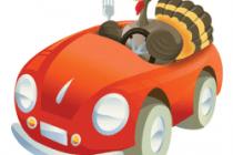 Turkey-Driving-250x231