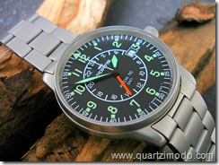 "Fortis Flieger, image courtesy of ""Luka-san"""