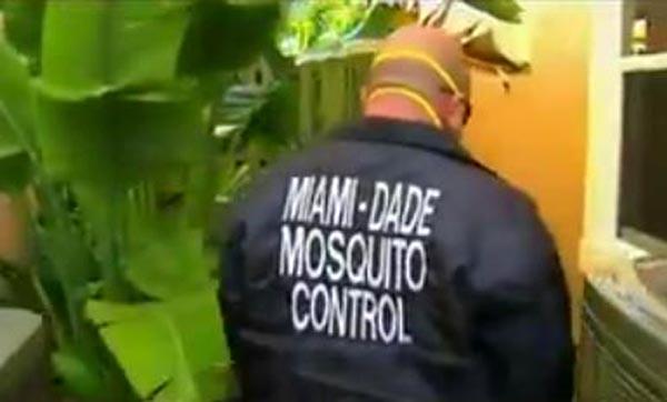 Mosquito del Zika aparece en Miami