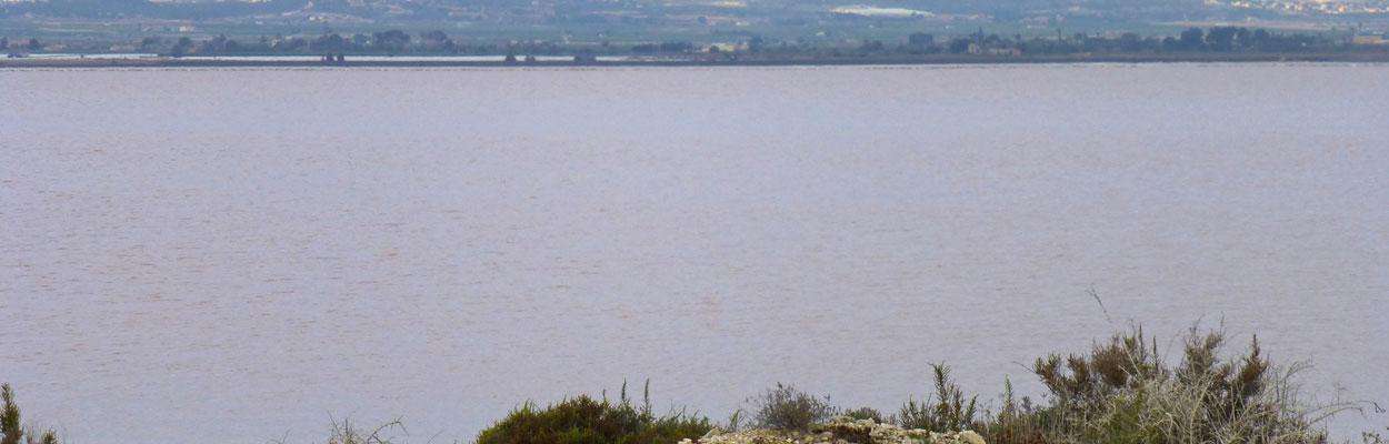 Lagunas-Mata-Torrevieja