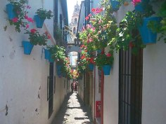 Guías turísticas con todo lo que hay que ver y hacer en la provincia de Córdoba, grandes ciudades, pequeños pueblos con encanto y espacios naturales