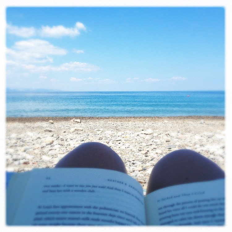 """42 degrees, same book, relaxing at the beach, watching passing by dolphins."""