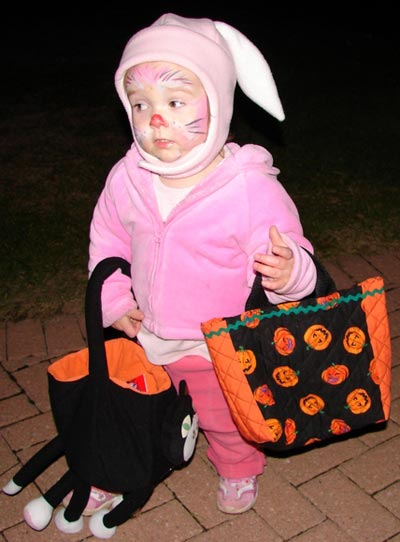 lucy-bunny-bags.jpg