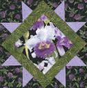 lavender-orchids.jpg