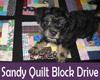 sandy-quilt-block-drive-t