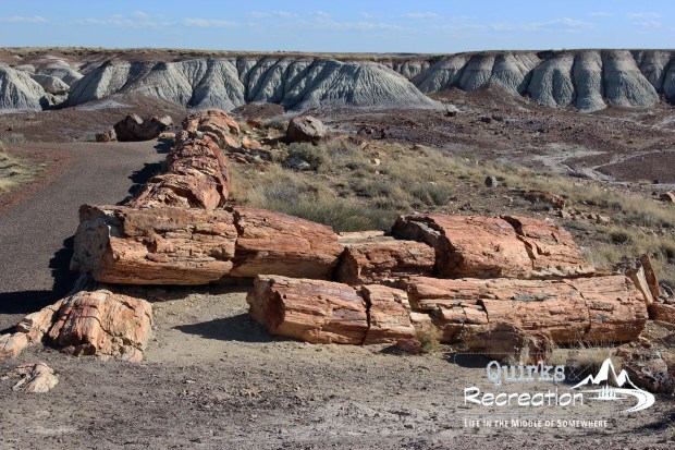 View at Petrified Forest National Park of Crystal Forest