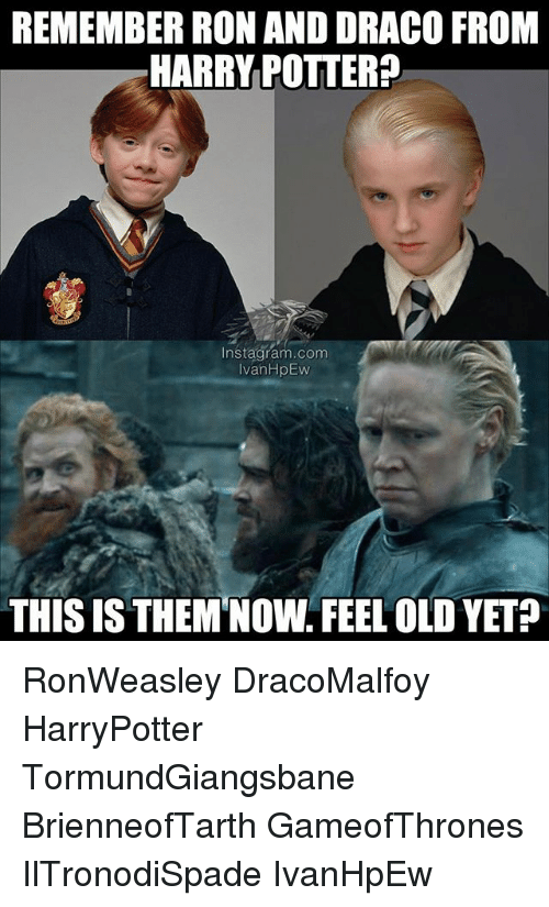 Wand Poster 33 Hilarious Draco Malfoy Memes That Will Make You Laugh Hard