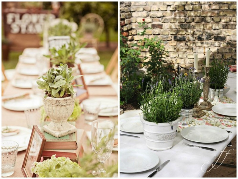 Non floral centrepiece - potted herbs - Quirky Parties