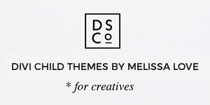 300X150 - designspace
