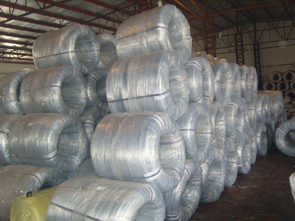 Where To Buy Wire Where To Buy Galvanized Wire Qunkun