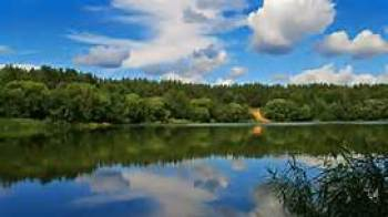 Calm lake with beautiful sky and trees