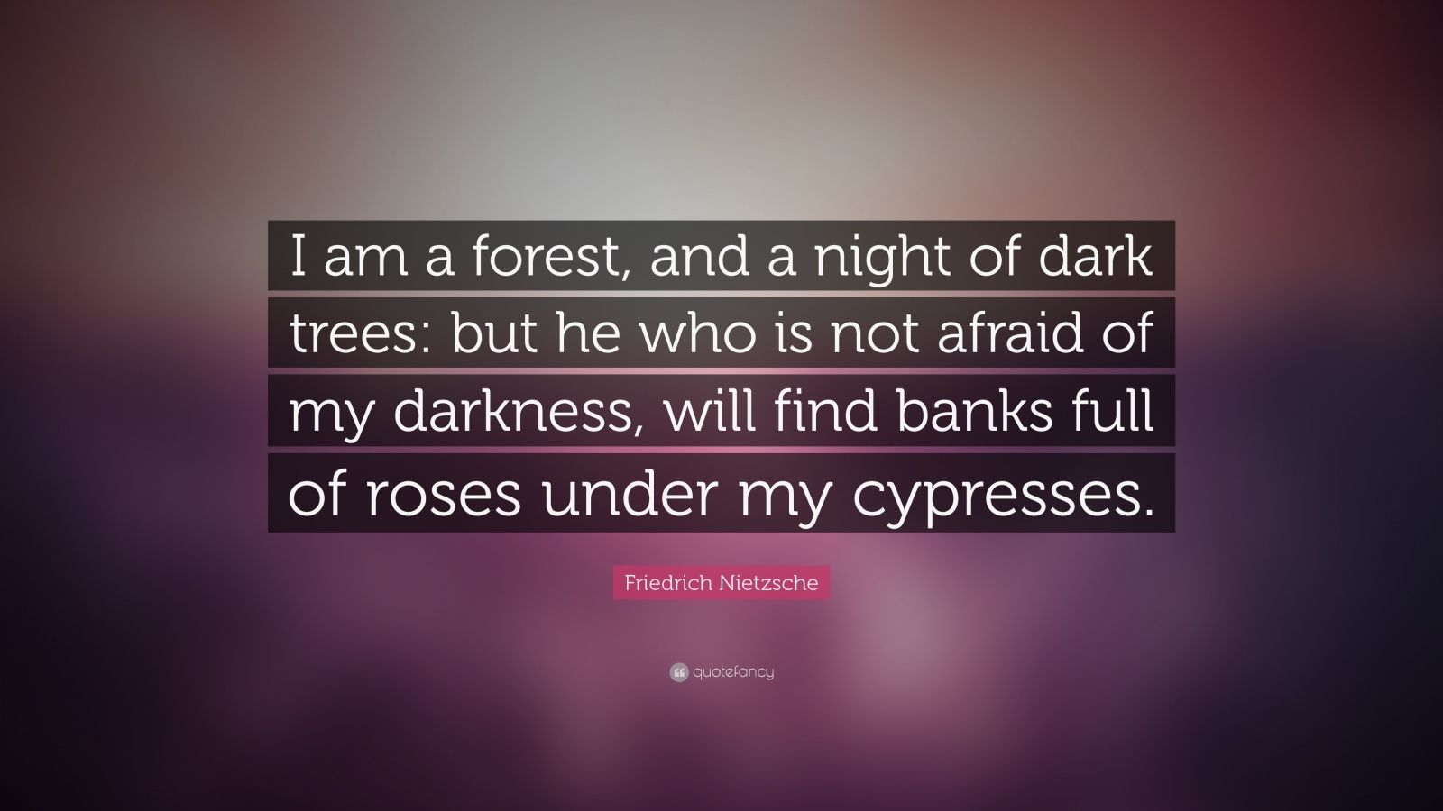 Dark Quote Wallpapers Friedrich Nietzsche Quote I Am A Forest And A Night Of
