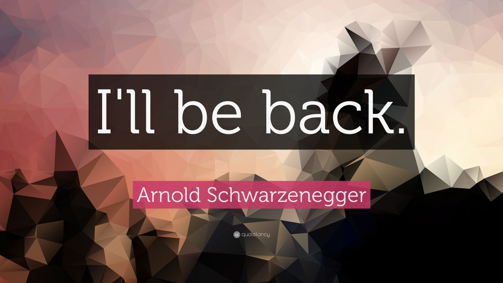 Arnold Schwarzenegger Quotes Wallpaper Arnold Schwarzenegger Quote I Ll Be Back 19