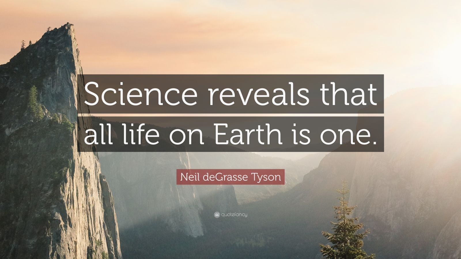 Theodore Roosevelt Wallpaper Quote Neil Degrasse Tyson Quote Science Reveals That All Life