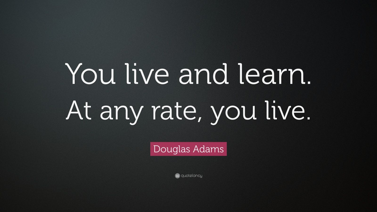 Benjamin Franklin Quotes Wallpaper Douglas Adams Quote You Live And Learn At Any Rate You