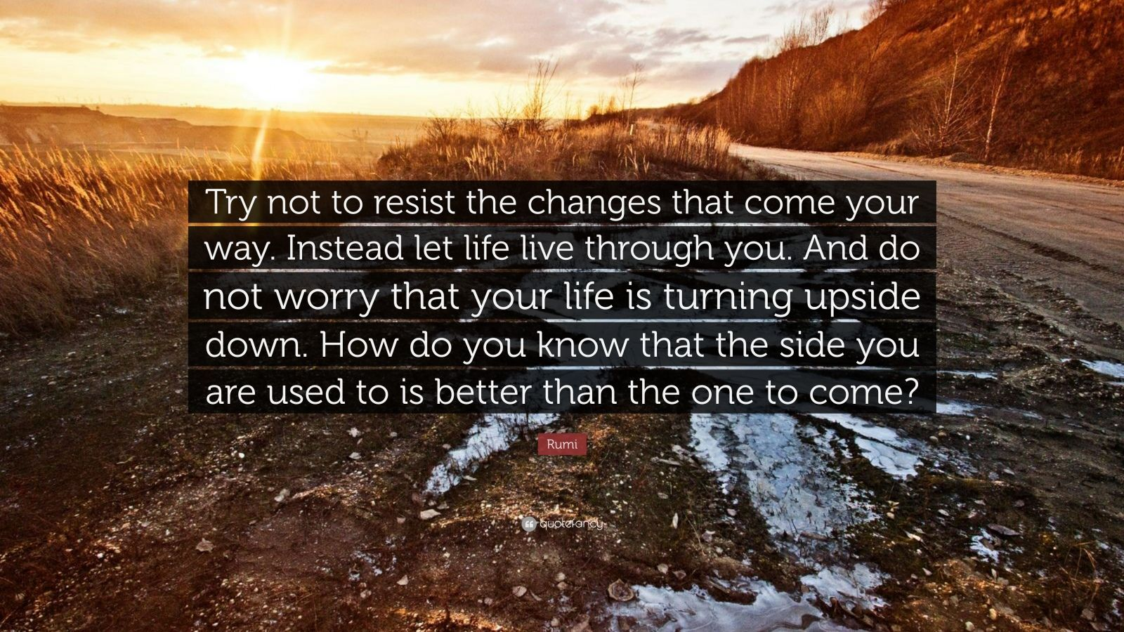 Into The Wild Quotes Wallpaper Rumi Quote Try Not To Resist The Changes That Come Your