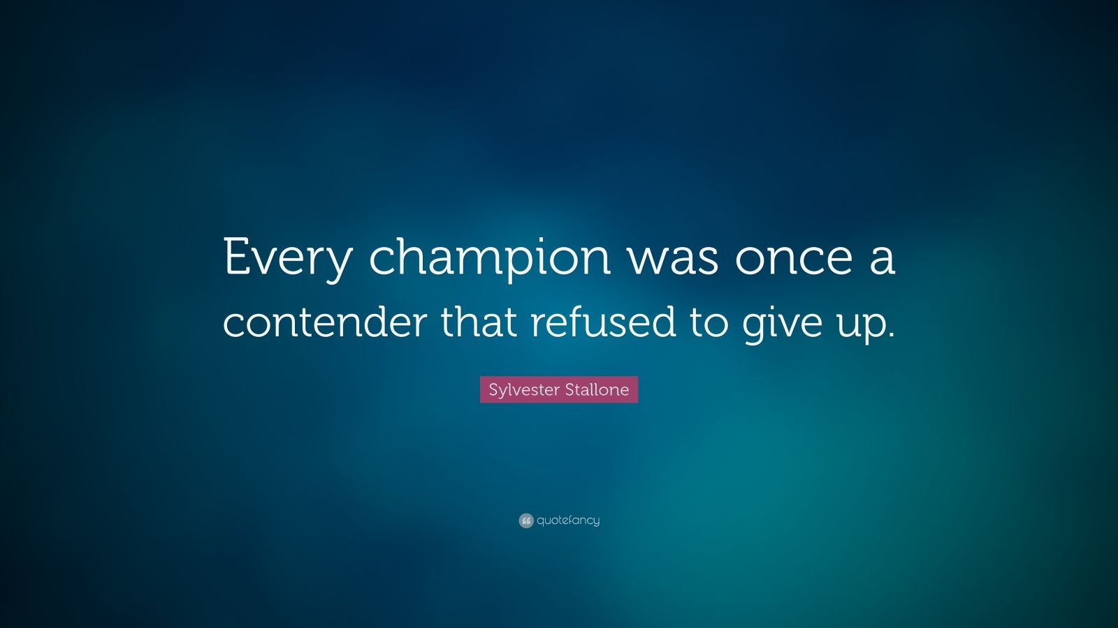 Motivational Life Quotes Wallpapers Sylvester Stallone Quote Every Champion Was Once A