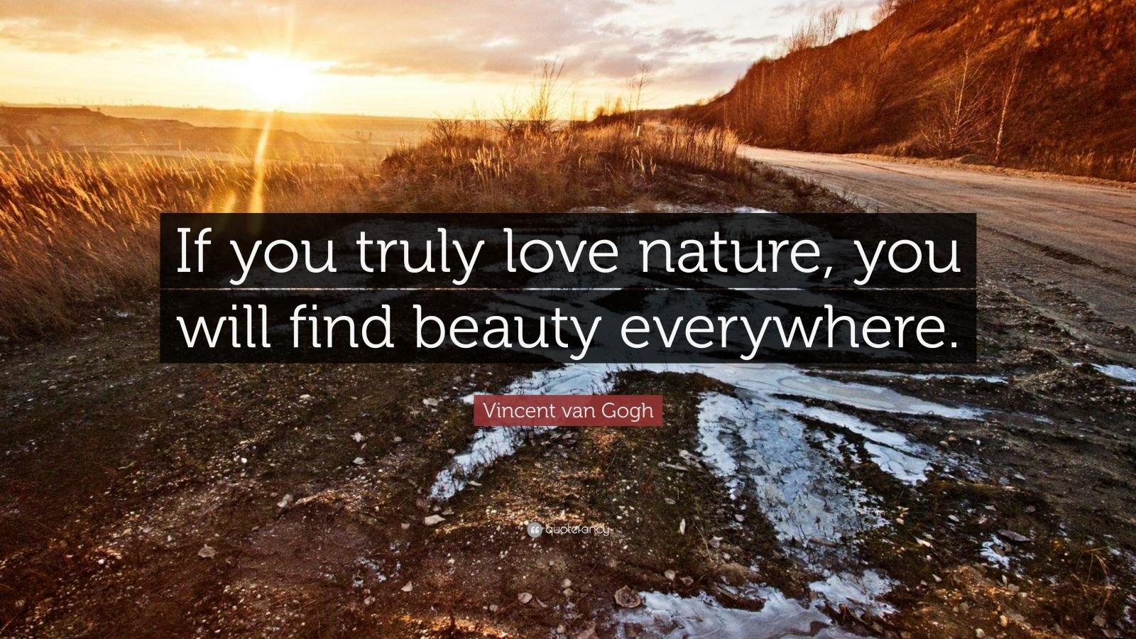 Vincent Van Gogh Quotes Wallpaper Vincent Van Gogh Quote If You Truly Love Nature You