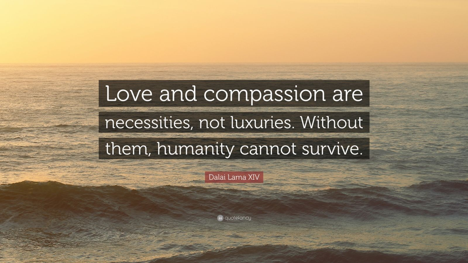 Dalai Lama Quotes Wallpapers Dalai Lama Xiv Quote Love And Compassion Are Necessities