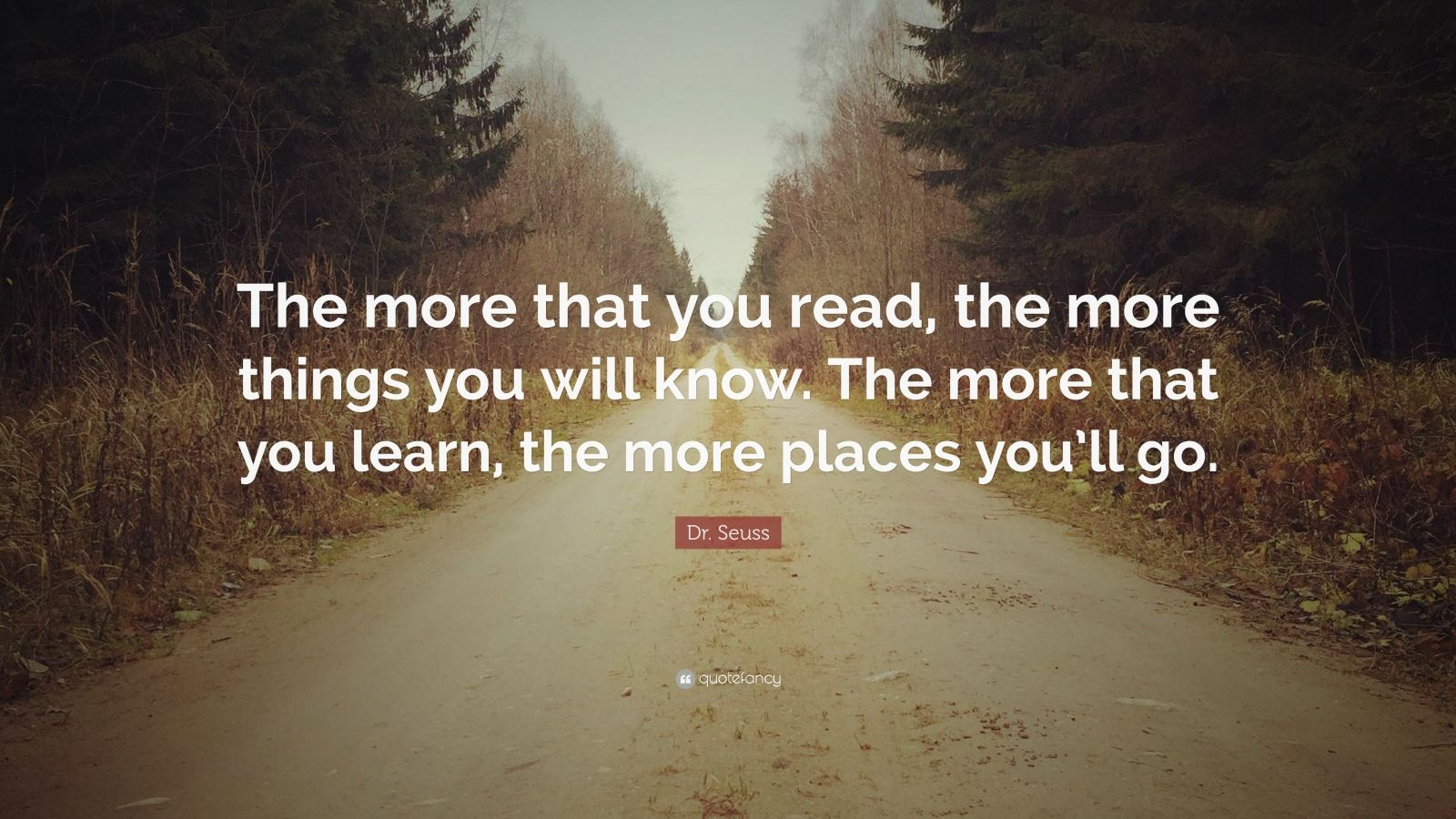 Dr Abdul Kalam Quotes Wallpapers Dr Seuss Quote The More That You Read The More Things