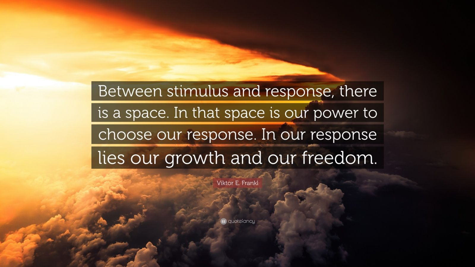 Wallpaper Writing Quotes Viktor E Frankl Quote Between Stimulus And Response