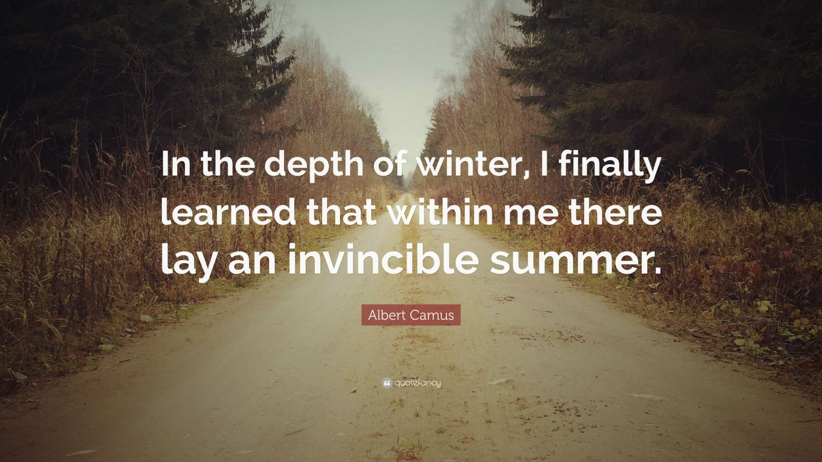 Henry David Thoreau Wallpaper Quote Albert Camus Quote In The Depth Of Winter I Finally