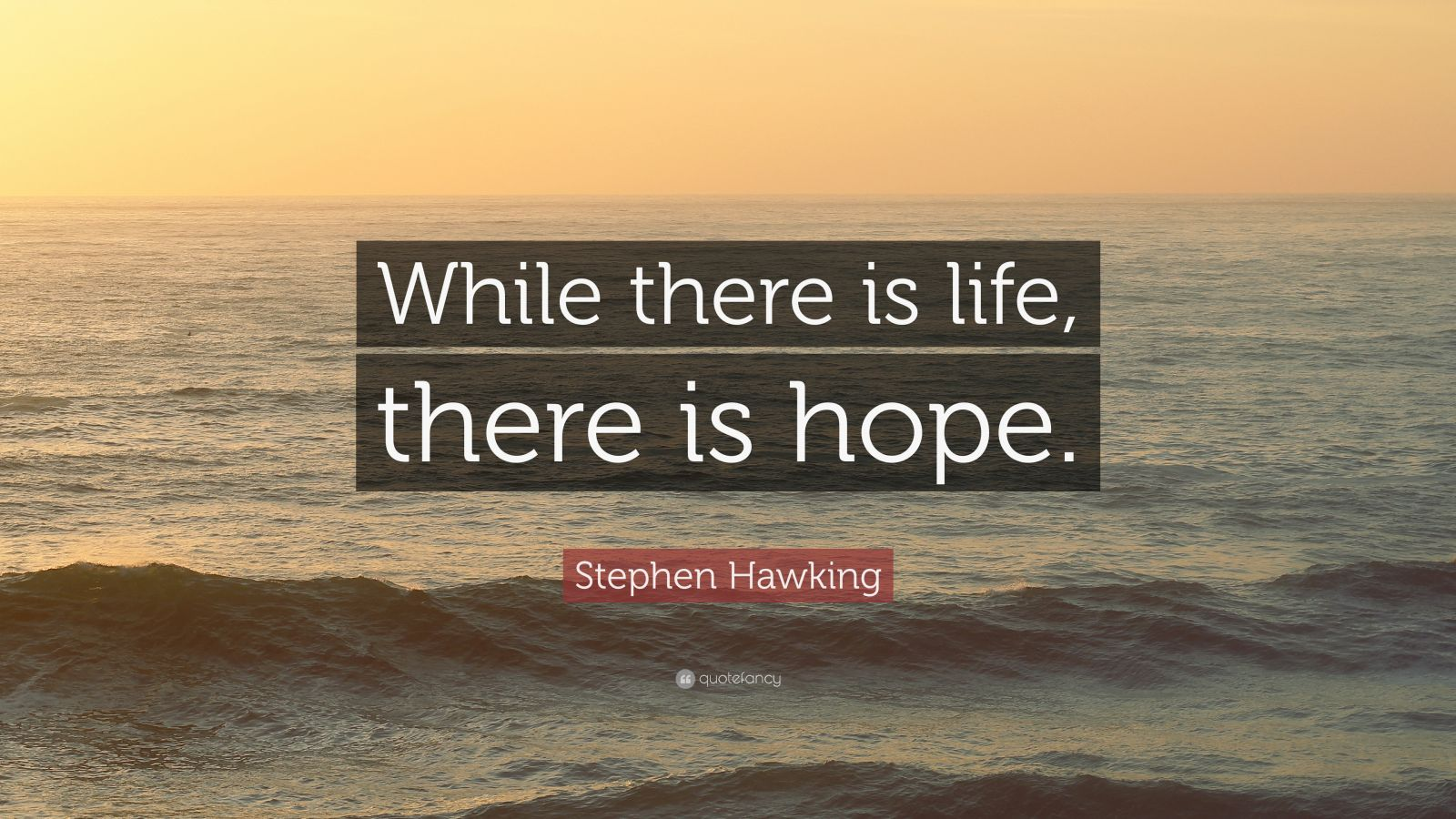 Benjamin Franklin Quotes Wallpaper Stephen Hawking Quote While There Is Life There Is Hope