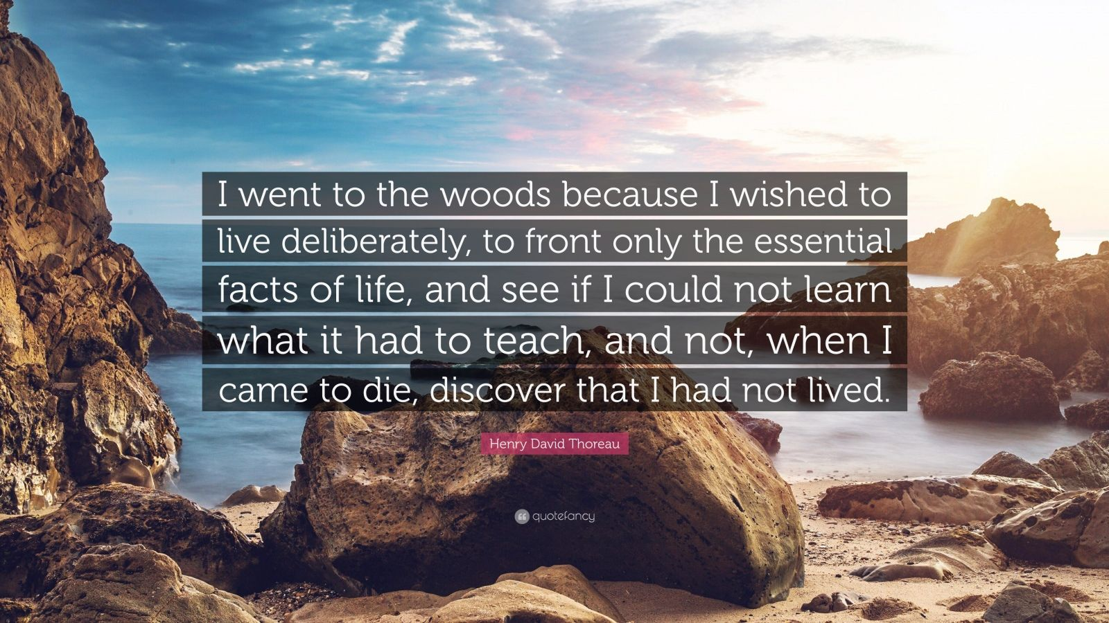 Don T Trust Girl Wallpaper Henry David Thoreau Quote I Went To The Woods Because I