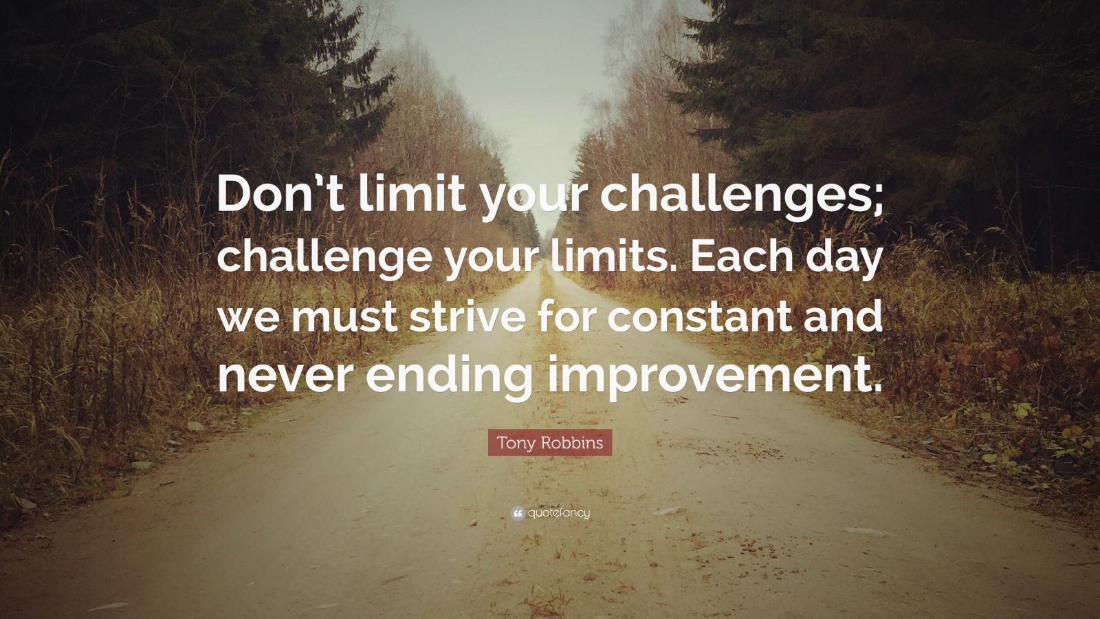 Inspirational Quotes On Life Challenges Wallpapers Tony Robbins Quote Don T Limit Your Challenges