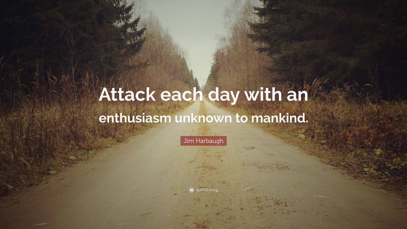 Quotes About The Unknown Wallpaper Jim Harbaugh Quote Attack Each Day With An Enthusiasm