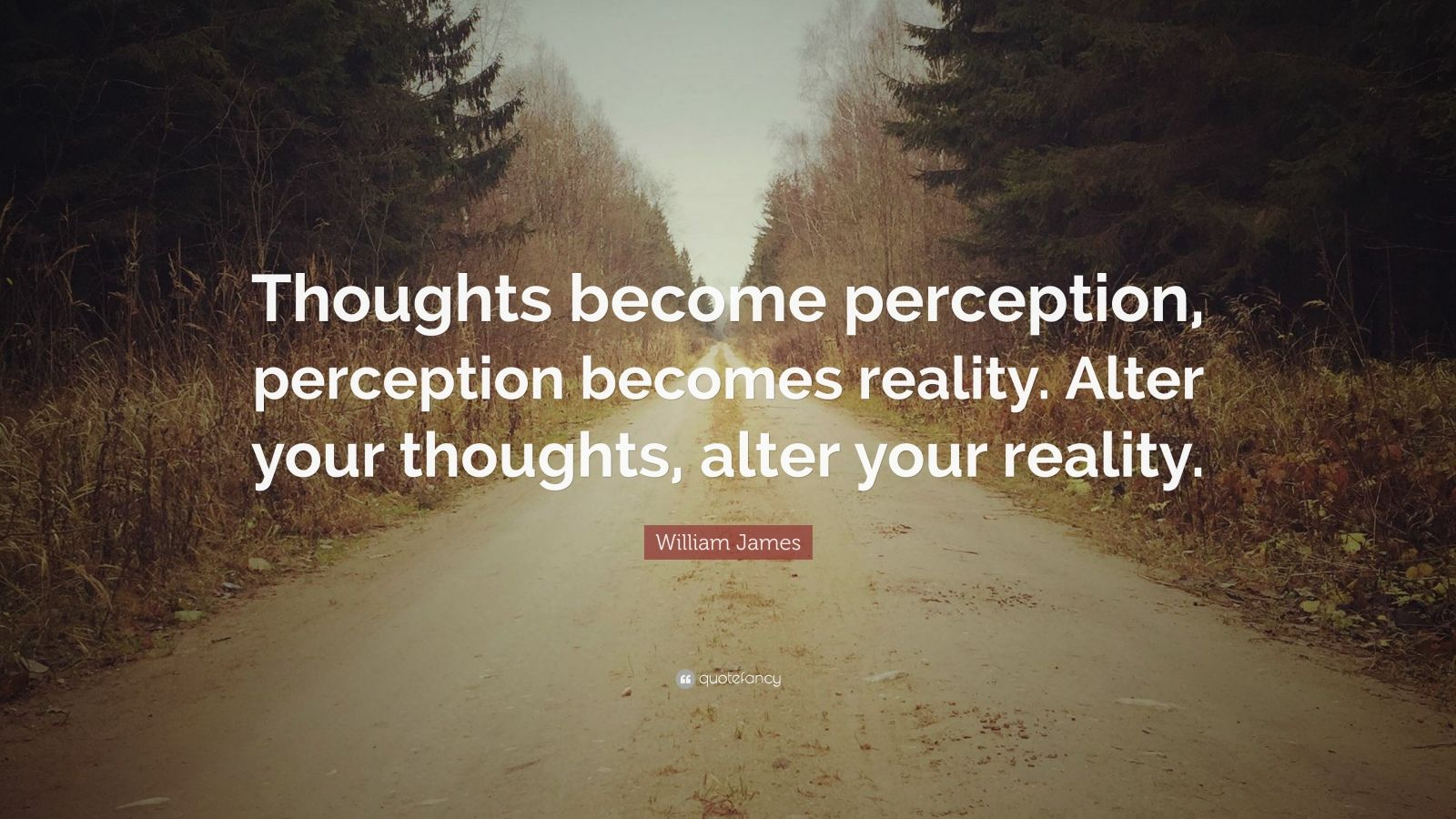 Fancy Quote Wallpaper William James Quote Thoughts Become Perception