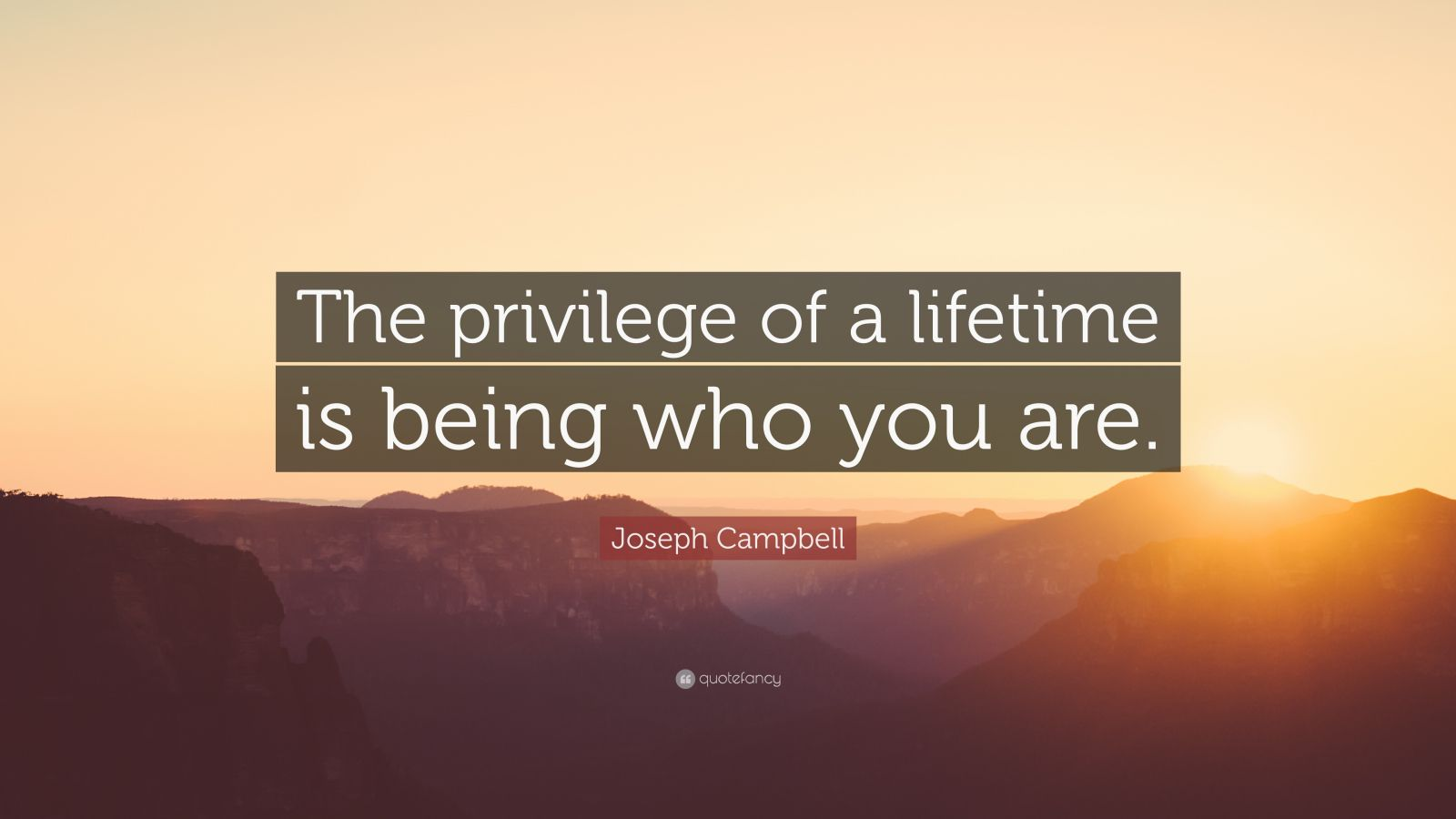 Images Of Inspiring Quotes Wallpaper Joseph Campbell Quote The Privilege Of A Lifetime Is
