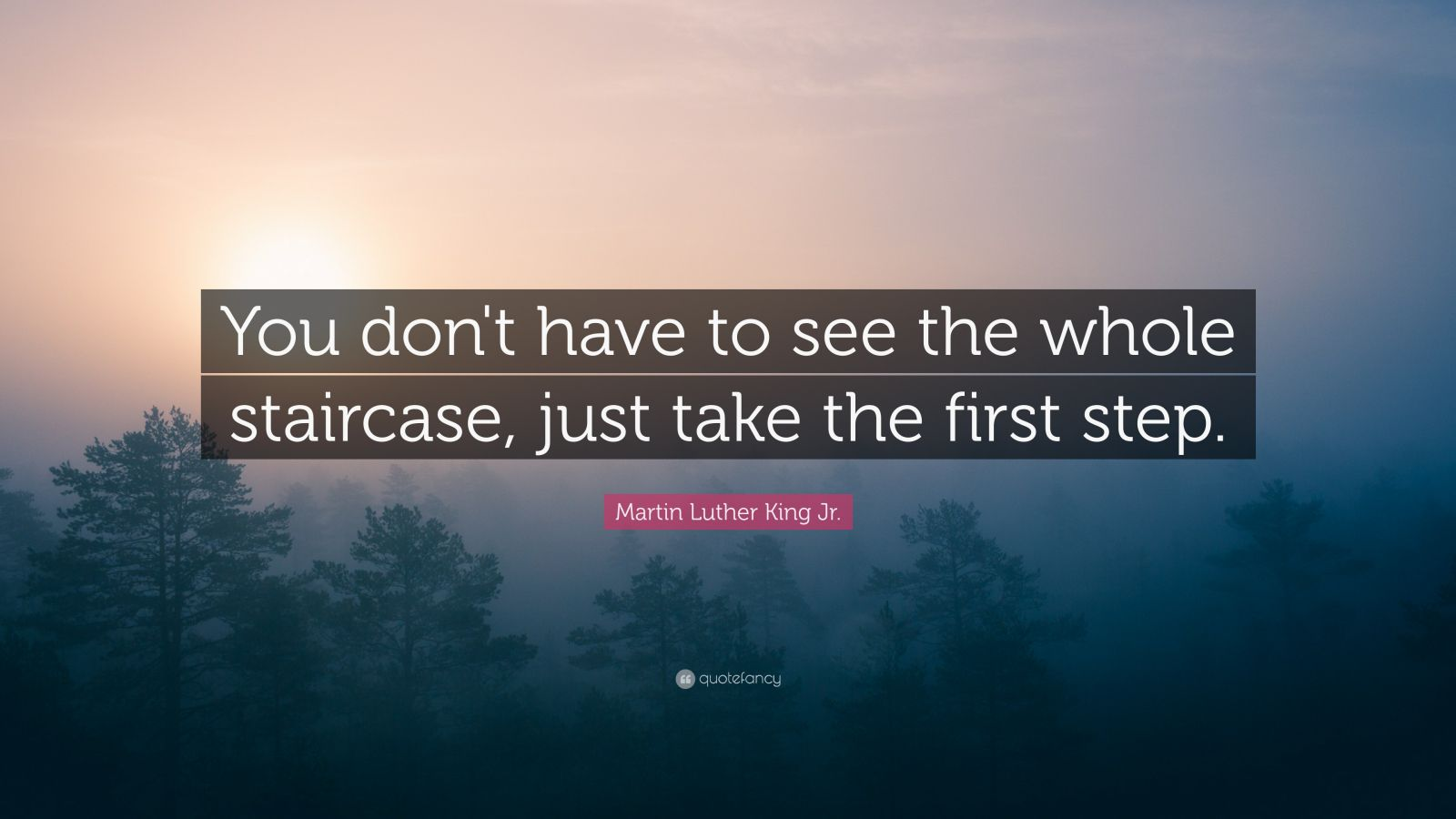 Napoleon Hill Quotes Wallpaper Martin Luther King Jr Quote You Don T Have To See The