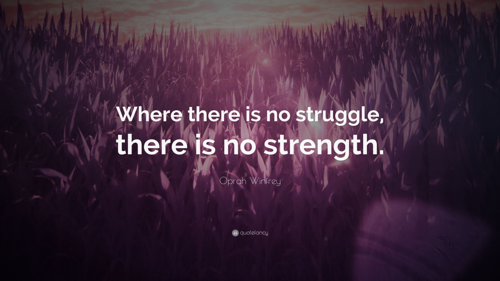 Mother Quote Wallpaper Oprah Winfrey Quote Where There Is No Struggle There Is