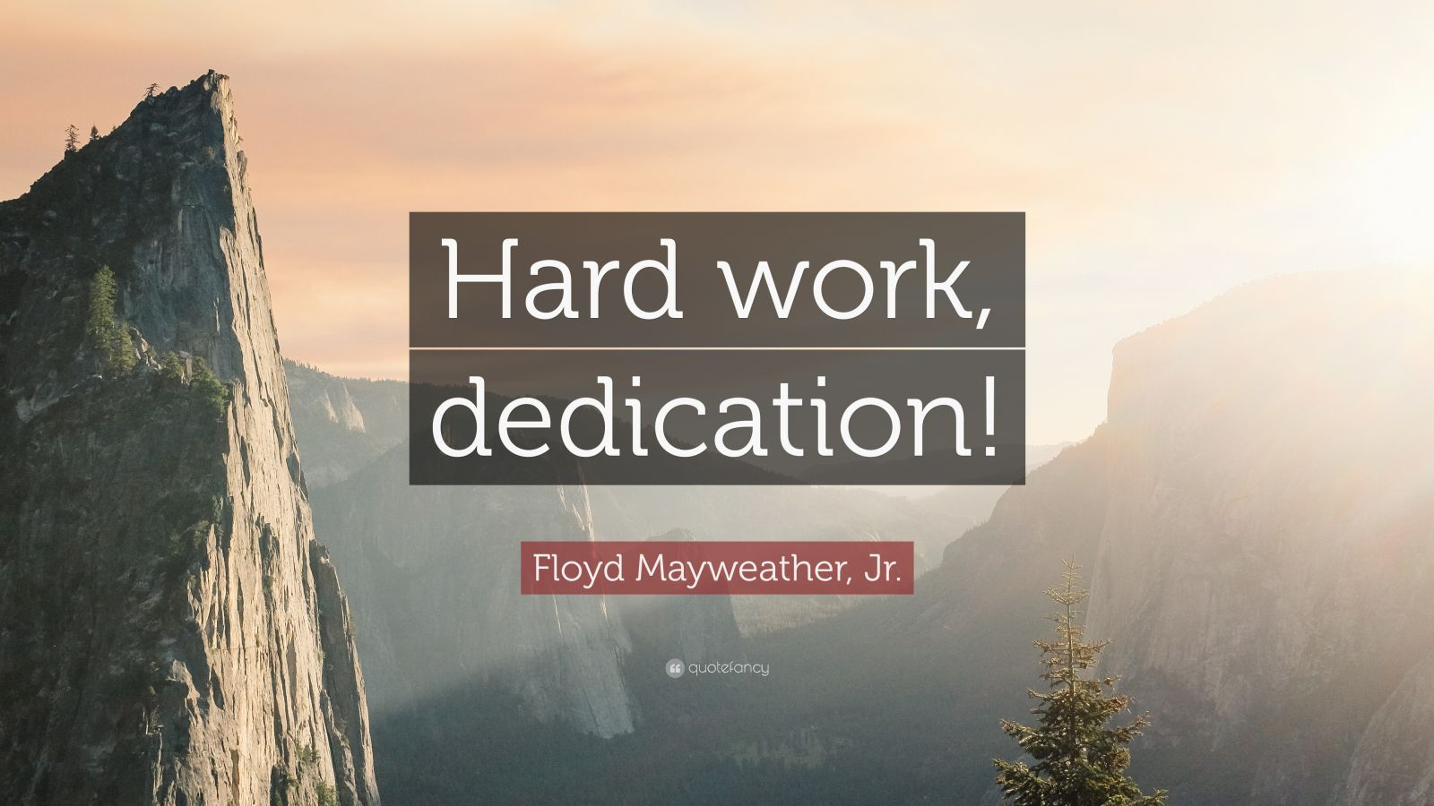 Steve Jobs Motivational Quotes Wallpaper Floyd Mayweather Jr Quote Hard Work Dedication 12