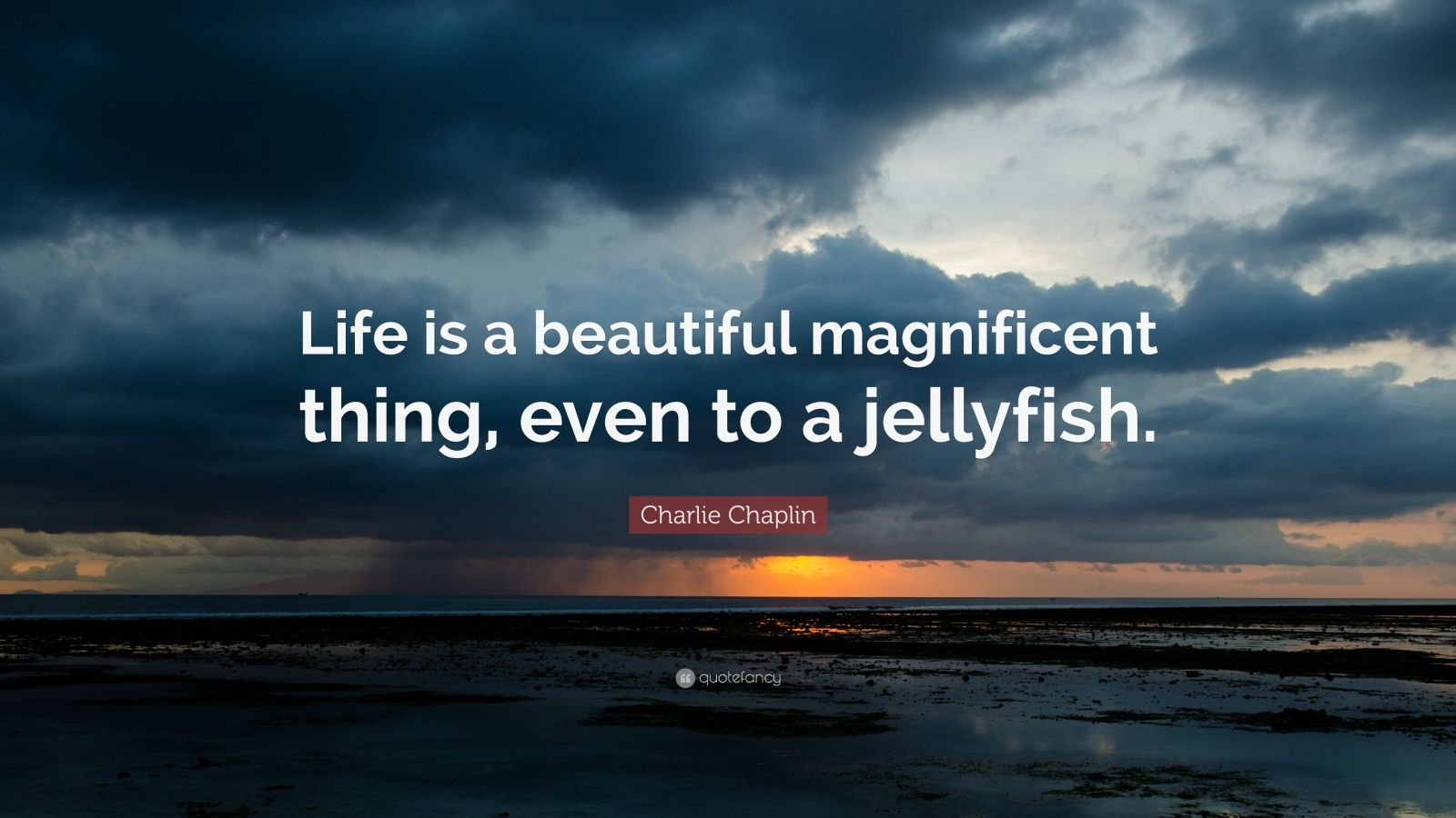 Wallpapers Philosophy Quotes Charlie Chaplin Quote Life Is A Beautiful Magnificent