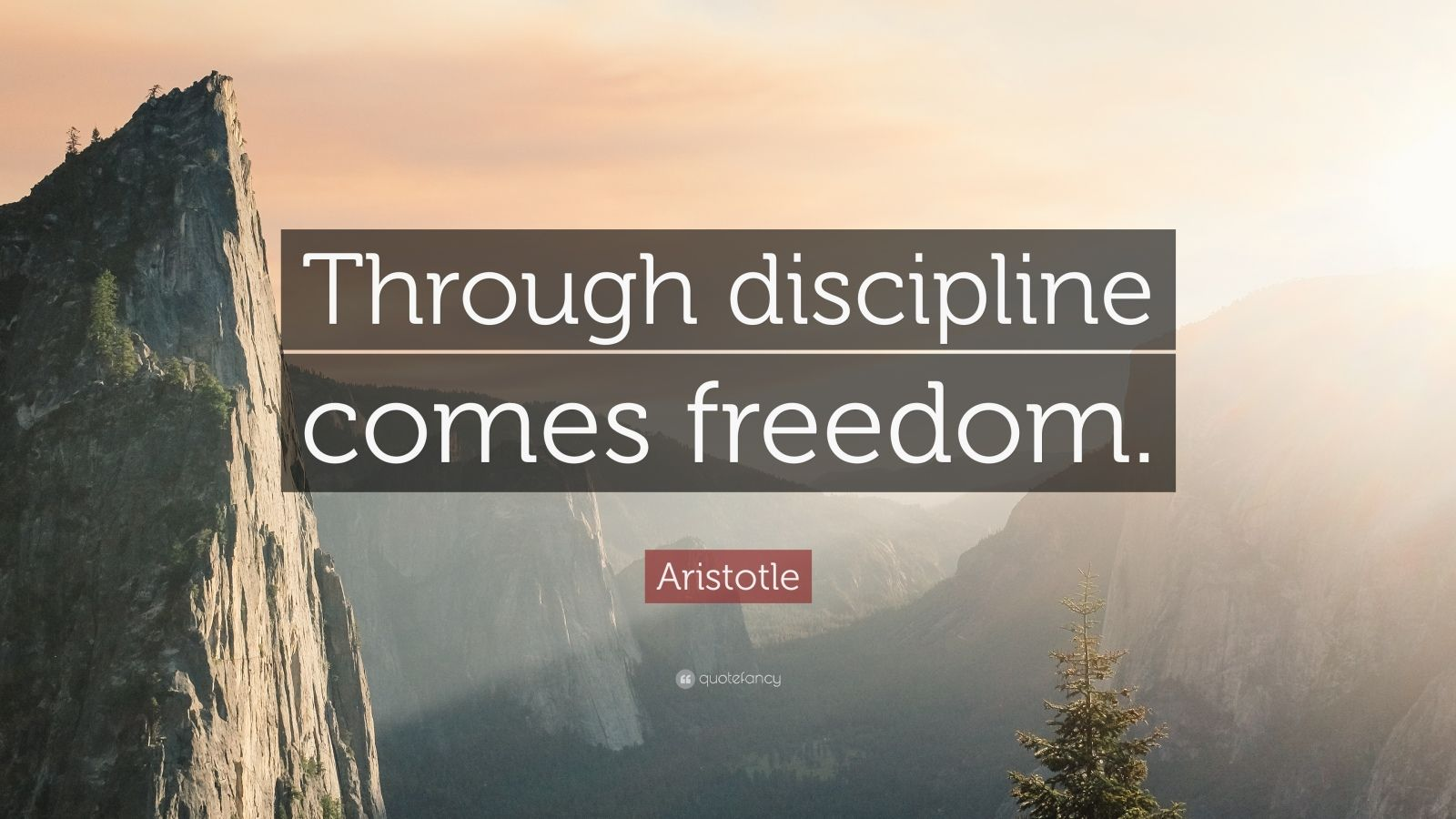 Aristotle Quotes Wallpaper Aristotle Quote Through Discipline Comes Freedom 33