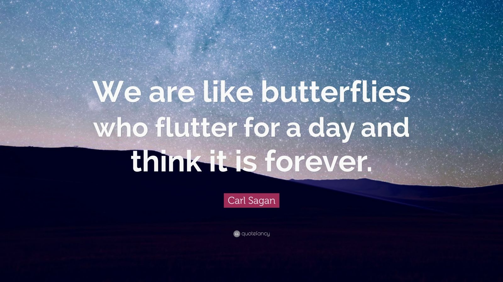 Elon Musk Quotes Wallpapers Carl Sagan Quote We Are Like Butterflies Who Flutter For