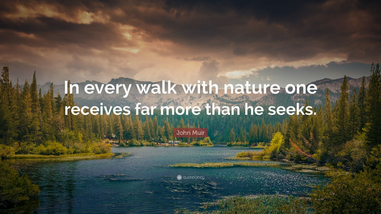 Theodore Roosevelt Wallpaper Quote John Muir Quote In Every Walk With Nature One Receives